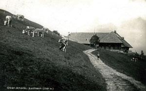 Luthern, Postkarte Ober Ahorn (1160m), Poststempel Eriswil 18. 10.1932, Foto F. Bernhardt Huttwil