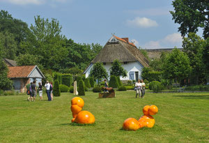 Blick in den Skulpturenpark in Hüde, Foto: G. Budderick