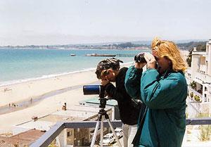 写真:ジョナ・マゼット博士  モントレー湾でラッコの調査を行なう