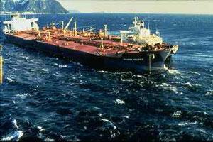1989年のエクソン・バルディーズ号原油流出事故は2,100キロメートルの海岸線と28,500平方キロメートルの海を覆った。
