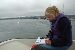 モントレーベイ水族館のラッコ研究者ミシェル・ステッドラーが記録帳にラッコの活動を記録している。アメリカ地質調査所とカリフォルニア大学サンタクルーズ校のラッコの行動に関する研究の一環。Tania Larson, U.S. Geological SurveyPubli
