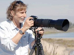 キム・スタインハートはカリフォルニア沿岸エルクホーン湿地帯近くの自然の生息域に暮らすラッコを撮影している。