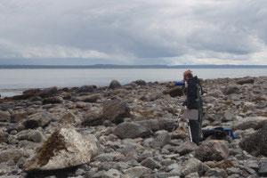 アラスカでラッコを追う研究者ジェシカ・フジイ Photo by Nicole LaRoche