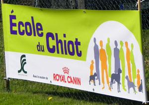 L'école du Chiot