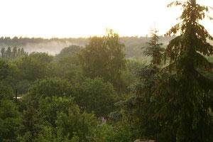 Blick aus dem Fenster in Richtung Heidesee und Dölauer Heide