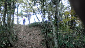 城ヶ山頂上直下