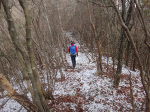 落ち葉と雪の道