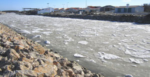 Eau gelée sur le bassin conchylicole (photo C. Civale ©)