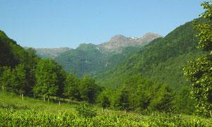 Le Mt Fourcat (2001 m) vu du jardinet