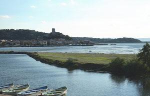 Au milieu du delta de l'Aude