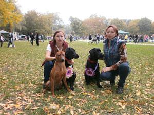 Наша команда и наши собаки