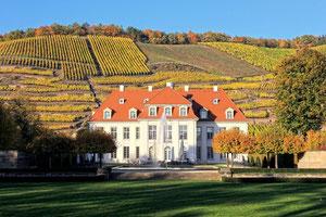 Schloss Wackerbarth um 1730 erbaut vor den Weinbergen der Lößnitz