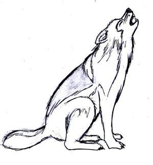 Disegnare un lupo comics art studio for Disegni di lupi facili