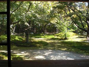 いつもこの庭を見ながら文筆活動をしていたという