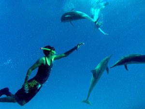 Maher and Chris snorkling with Dolphins