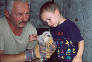 NABU- Mitglied Helmut Schmidt, der Initiator des Schleiereulenschutzes bei der Kontrolle eines Brutplatzes
