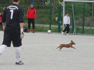 Szene aus dem Spiel beim SV Großpostwitz-Kirschau