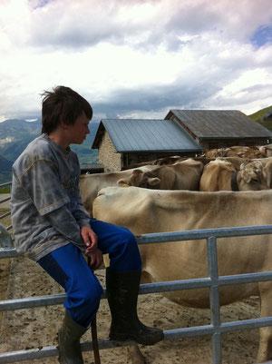 Alp Stavons (GR): gesunde Landwirtschaft