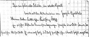 Karin Schröder/Sonderform Gigabuch Forschung/Originalhandschrift der Transkription Heft 5/Reinschrift
