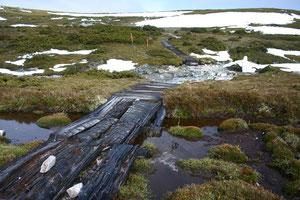 Altschnee auf dem Cradle Plateau