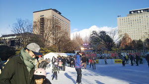 Sendai Winter Park   スターライトリンク