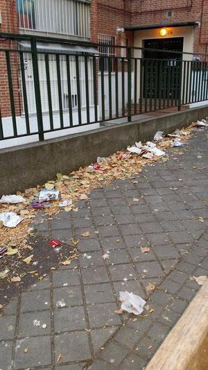 Suciedad en la calle Helena de Troya (Foto de Ana Tablado)