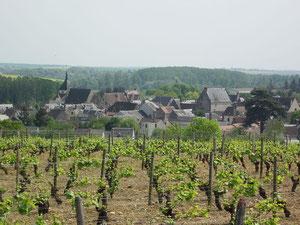 Vignobles de Reuilly