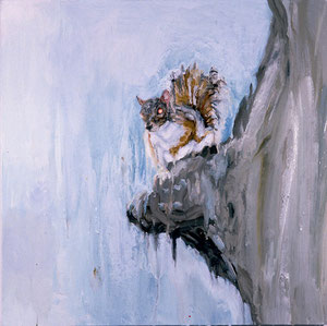 Squirrel, 1996 Oil on canvas, 26 x 26 inches