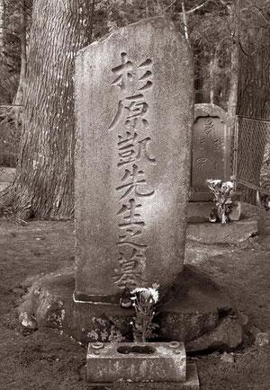 日新館の杉原凱教授の墓