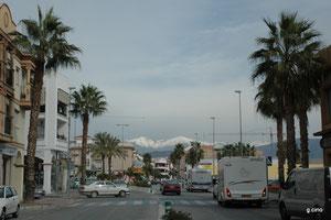 Andalousie (au fond la sierra Nevada)