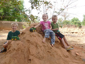 Every family needs a good termite mound in their yard. Great for kids!