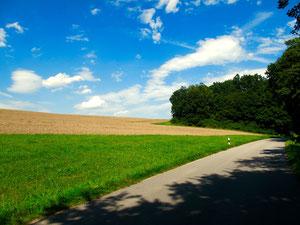 Freie Landschaften soweit das Auge reicht