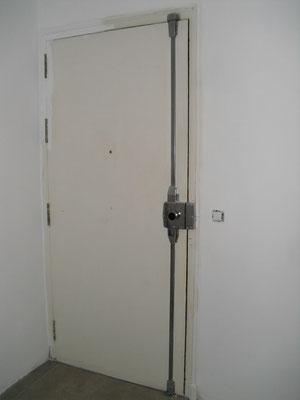 Lacar pintor malaga for Lacar puertas en blanco