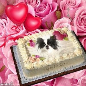 Samiras 3. Geburtstag
