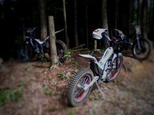 多根農村公園の森の入り口