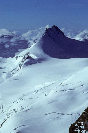 Bild: Rimpfischhorn 4199 m von der Lenzspitze