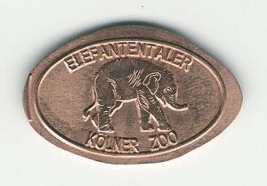 Kölner zoo - motief 1