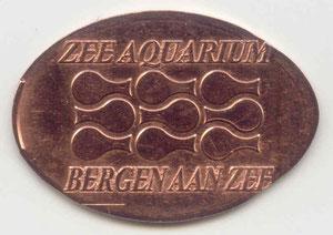 Bergen aan Zee - Zee Aquarium - motief 1