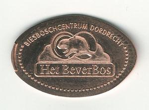 Dordrecht de Biesbosch - motief 01