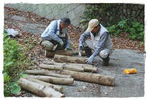 2013.4.4 シイタケの駒打ち