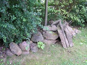 Steinläuse im Garten