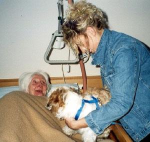 Besucherhund Sheila