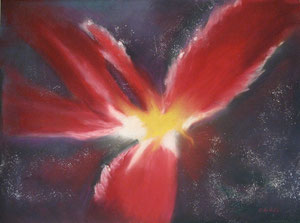 Phoenix Nebula, private collection
