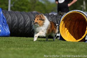 Foto aus Eislingen 2011 v. Mario/ Danke!