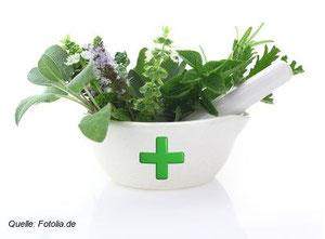 Heilpflanzen können präventiv und behandlungsunterstützend sehr gut Dienste leisten.