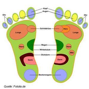 Über Ihre Fußsohlen lässt sich Ihr gesamter Körper ansprechen.