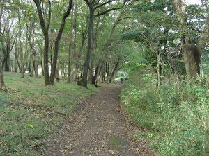旧大須賀家住宅付近