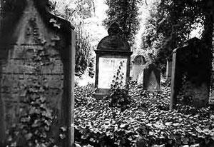 Jüdischer Friedhof an der Böhmerstraße