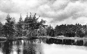 Eiswiese im Sommer 1910