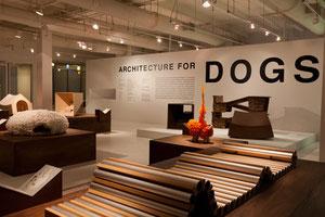 「犬のための建築」展から  世界の有名建築家が自分の愛犬の為に考えているようです